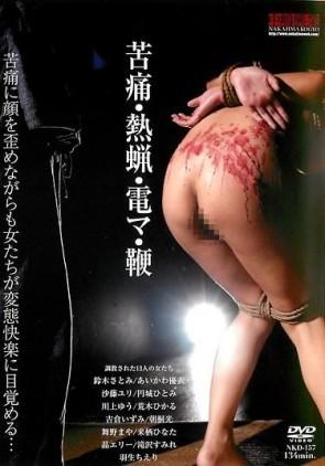 【モザ有】 苦痛・熱蝋・電マ・鞭