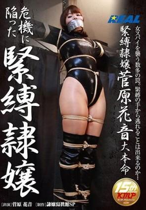 【モザ有】 危機に陥った緊縛隷嬢 菅原花音