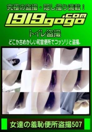 【無修正】 女達の羞恥便所盗撮 Vol.507