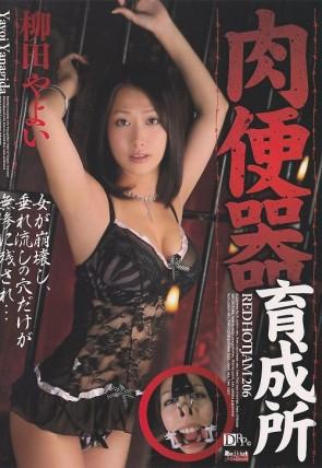 レッドホットジャム Vol.206 肉便器育成所 : 柳田やよい